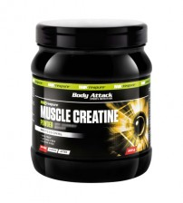 MUSCLE CREATINE 500gr