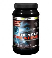 MUSCLE CREATINE 1000gr