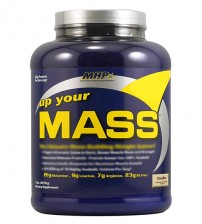 UP YOUR MASS 2,2 kg