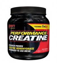 PERFORMANCE CREATINE 600gr